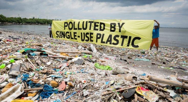 Fellow Champions Tanzania's Fight Against Plastic Waste