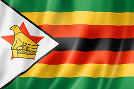 Tutu Fellows' Statement on the Unrest in Zimbabwe