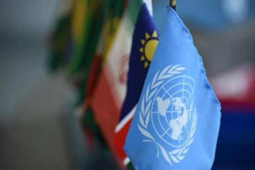 Fellow appointed by the United Nations to coordinate economic development in Namibia